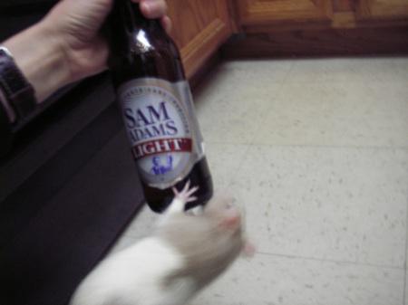 Pixel Beer Bottle